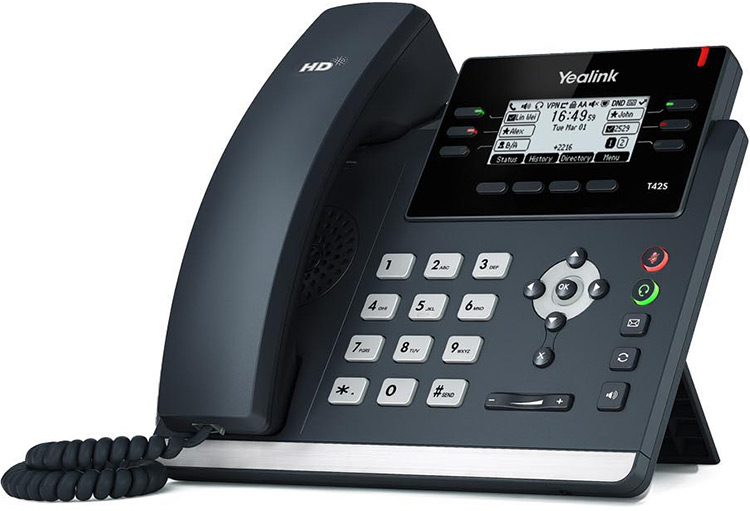 <h4>Premium</h4><p>$29.99 per month / per user<br>Incl. Yealink SIP-T42S Desk Phone</p>